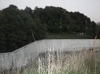 2007815_006
